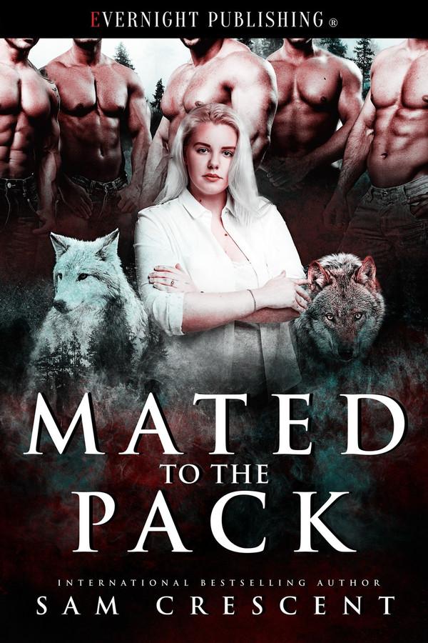 Genre: Erotic Paranormal Menage (MFMMMM) Romance  Heat Level: 4  Word Count: 30, 570  ISBN: 978-1-77339-882-2  Editor: Karyn White  Cover Artist: Jay Aheer