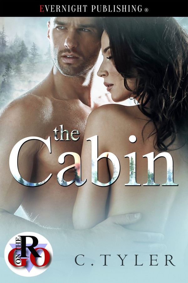 Genre: Erotic Contemporary Romance  Heat Level: 3  Word Count: 16, 200  ISBN: 978-1-77339-931-7  Editor: Karyn White  Cover Artist: Jay Aheer