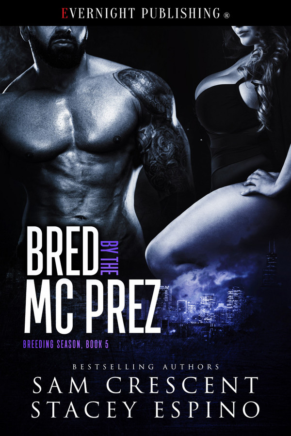 Genre: Erotic MC Romance  Heat Level: 3  Word Count: 39, 180  ISBN: 978-0-3695-0179-0  Editor: Audrey Bobak  Cover Artist: Jay Aheer