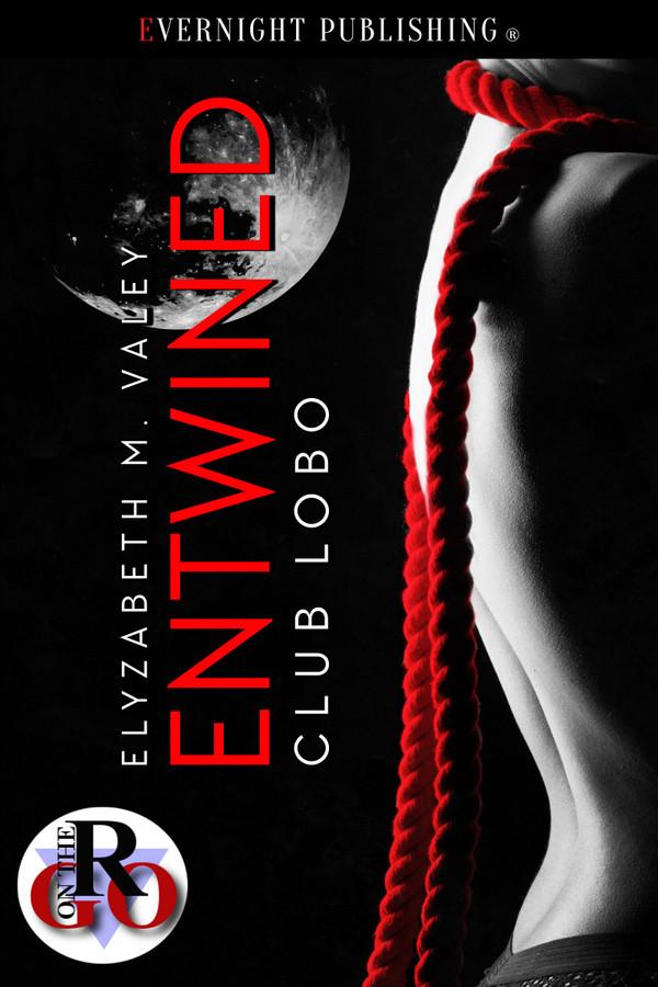 Genre: Erotic BDSM Romance  Heat Level: 4  Word Count: 12, 790  ISBN: 978-0-3695-0218-6  Editor: Audrey Bobak  Cover Artist: Jay Aheer