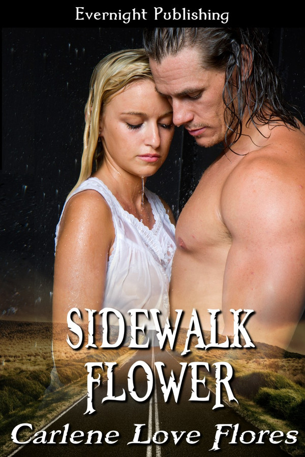 Genre: Contemporary Romance  Heat Level: 2  Word Count: 106, 500  ISBN: 978-1-77130-243-2  Editor: JS Cook  Cover Artist: Sour Cherry Designs