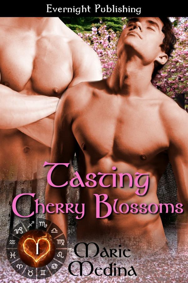 Genre: Fantasy Alternative (MM) Romance  Heat Level: 3  Word Count: 21, 910  ISBN: 978-1-77130-429-0  Editor: Karyn White  Cover Artist: Sour Cherry Designs