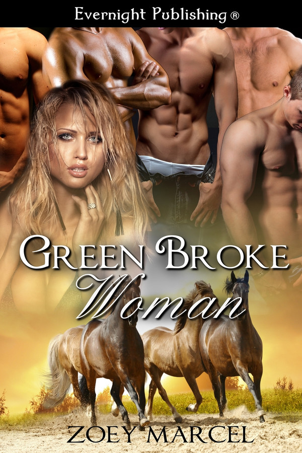Genre: Western BDSM Menage (MFMMMM) Romance  Heat Level: 4  Word Count: 101, 630  ISBN: 978-1-77130-947-9  Editor: Karyn White  Cover Artist: Sour Cherry Designs