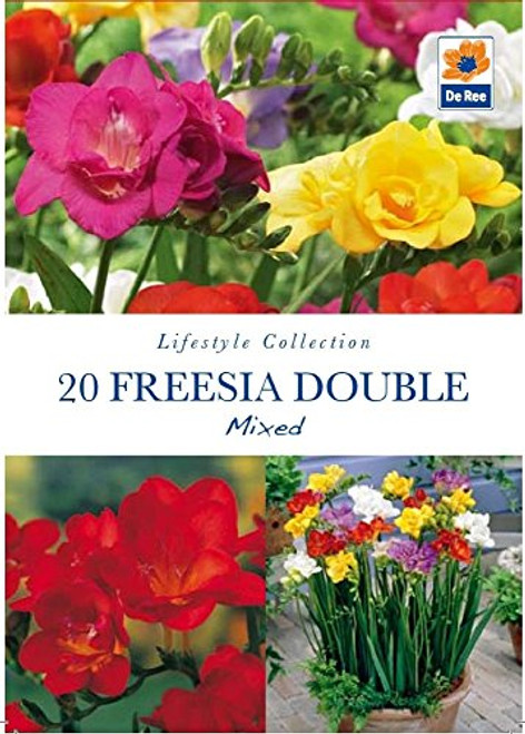 Pack of Lifestyle Collection Bulbs - 20 Freesia Double Mixed