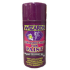 Wizards Ceramic Coat for Paint