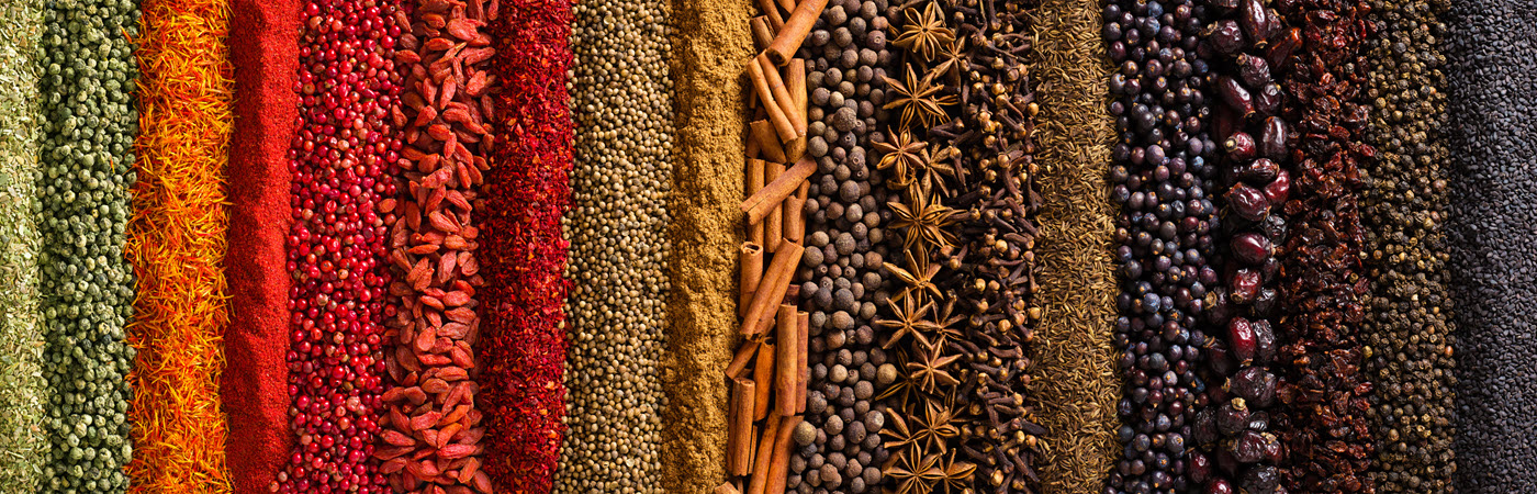Colorful spices in rows