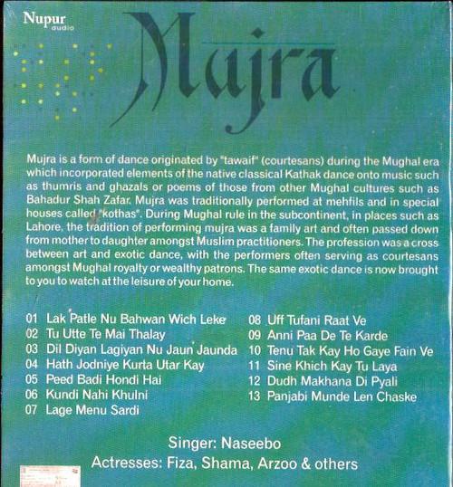 Mujra-NASEEBO-DVD 2014-Nupur - India Town Gifts