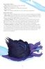 Big Bad Booklet 018 The Hydrail (PDF)