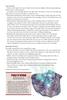 Big Bad Booklet 021 Shen (PDF)