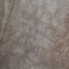 Cowhide Rug AUG167-21 (210cm x 170cm)