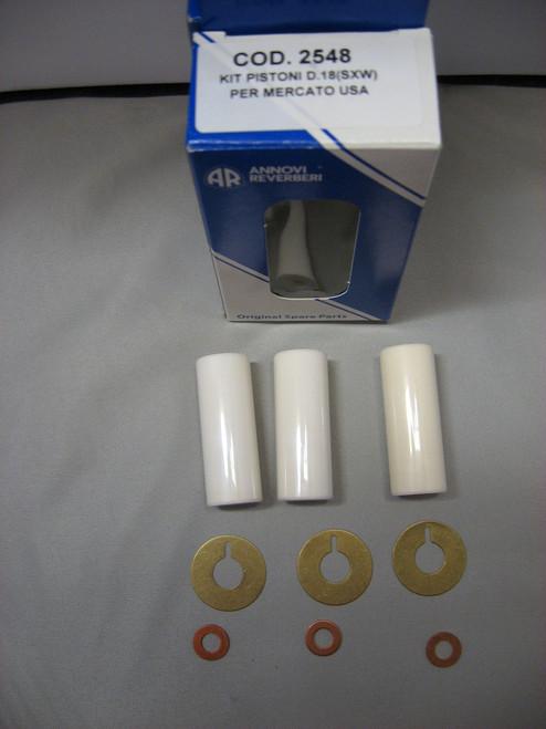 Replacement Piston Ceramics Kit 2548 for SXW RW pumps AR2548 18mm Ceramics