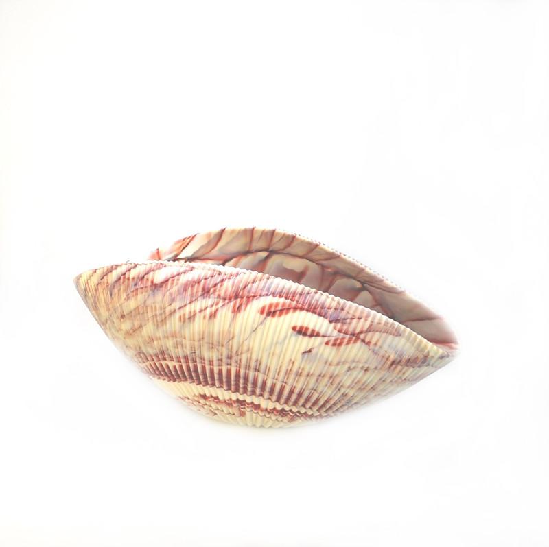 Murano Glass Shell Bowl Ivory Red Medium