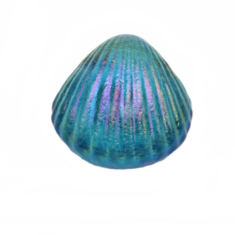 Shell Paperweight Aqua Blue