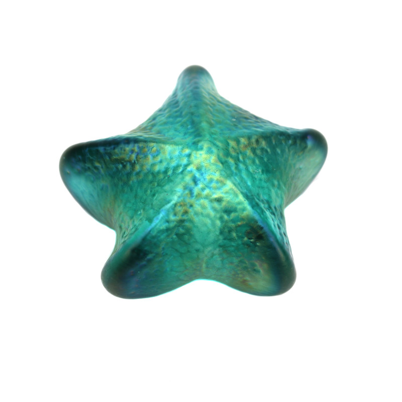 Starfish Paperweight Teal Green
