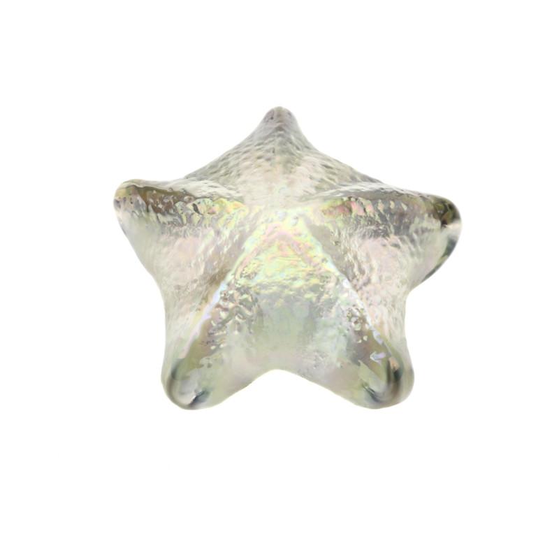 Starfish paperweight Iridescent Clear