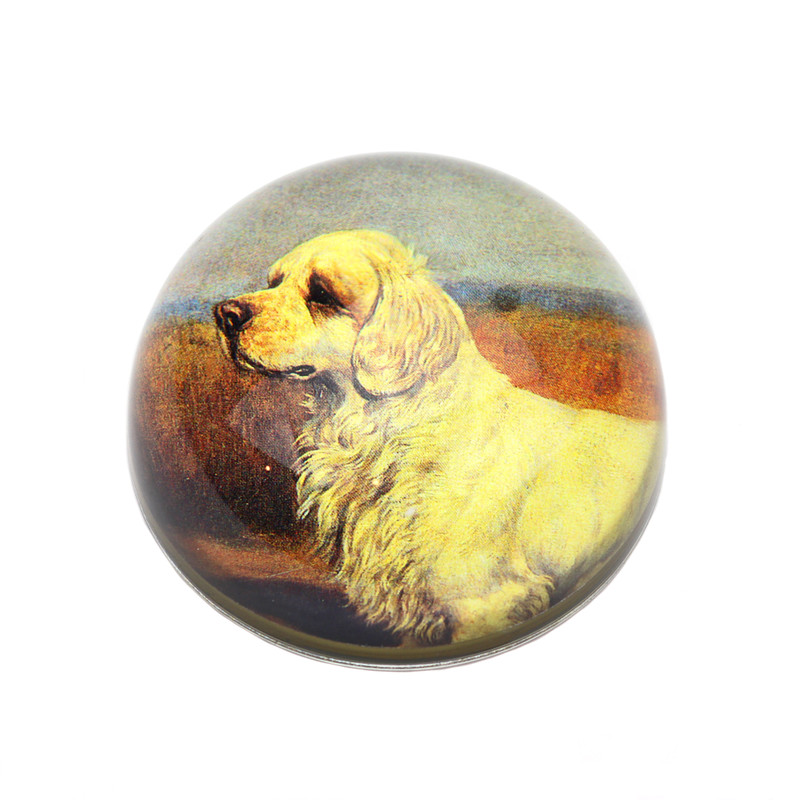 Clumber Spaniel Crystal Dome Paperweight