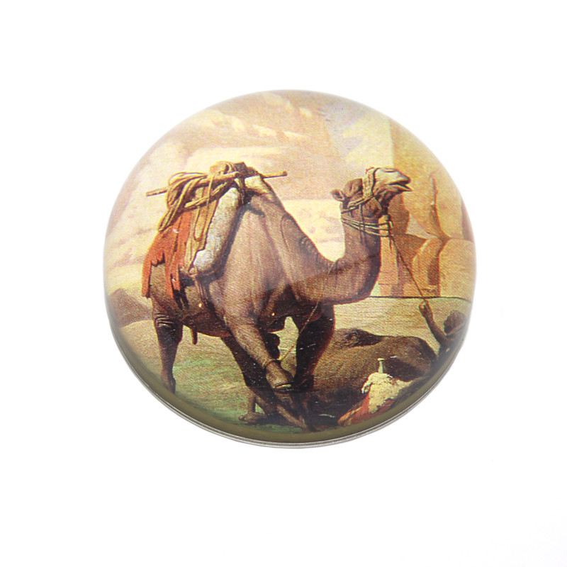 Camel Crystal Dome Paperweight