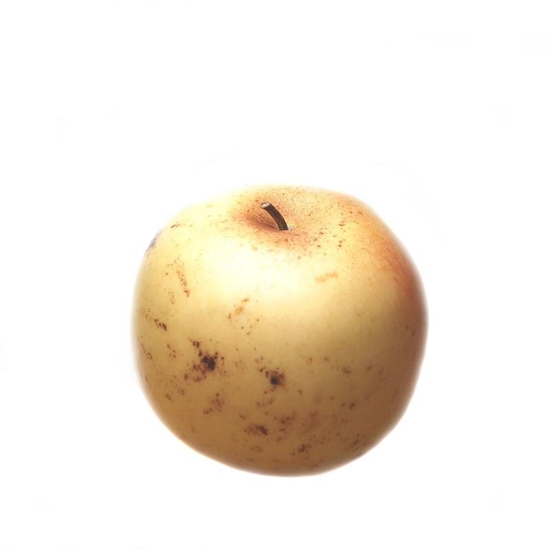 Marble Yellow Apple