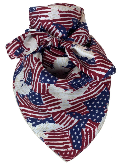 Americana Red White and Blue