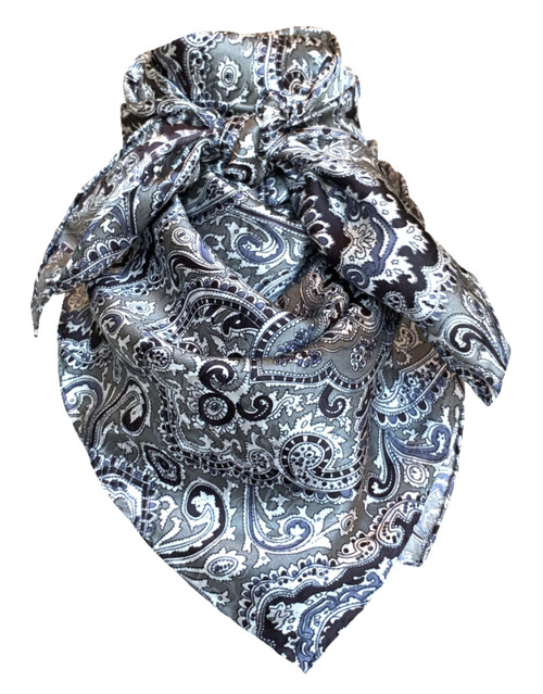 Paisley Silver and Black