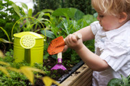 6 Fun Outdoor Projects With The Kids!