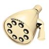 Speakman S-2251-PB Icon Brass Showerhead 2.5 GPM Polished Brass