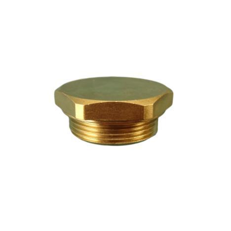 Leonard Valve 06 RF Strainer Cap Rough Brass