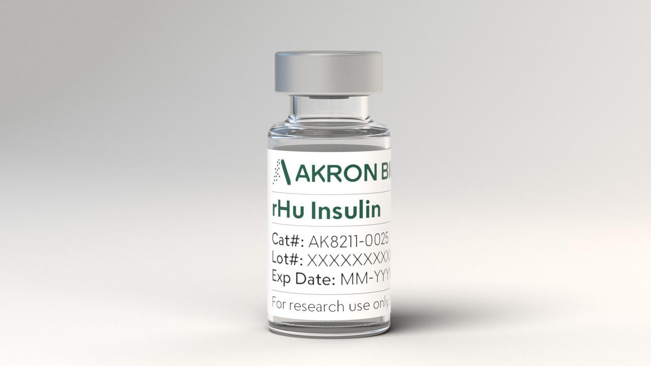 Recombinant Human Insulin (rHu Insulin)