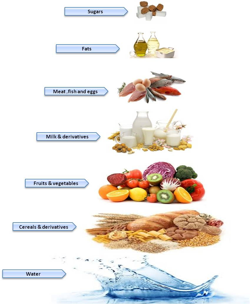 diabetes-obesity World Biomedical Frontiers