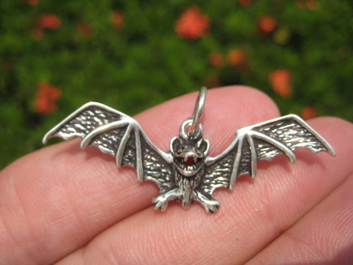 Front 925 Silver Pendant bat picture with natural background