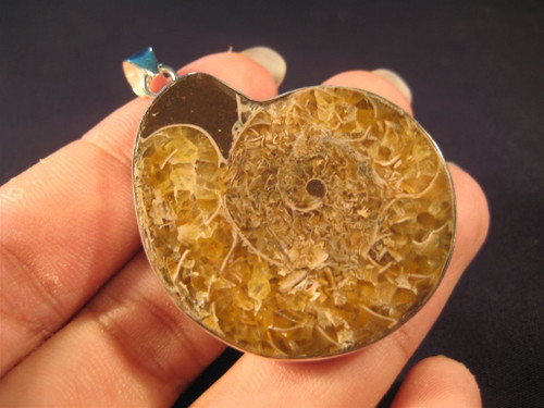 925 Silver pendant ancient sea ammonite fossil A