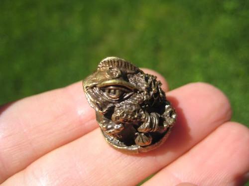 Photo 1 Brass Frog Statue