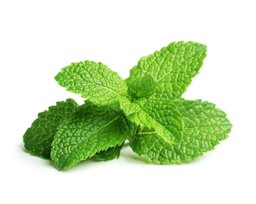 Click And Grow Peppermint  Pods
