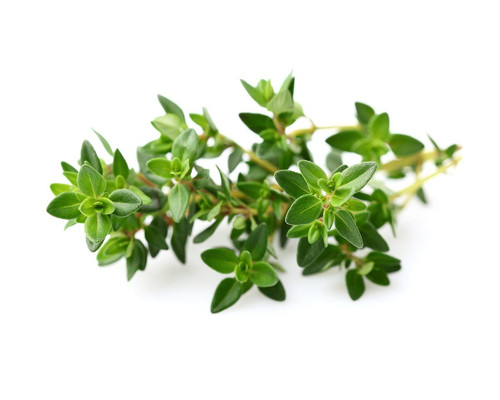 Click And Grow Thyme Pods