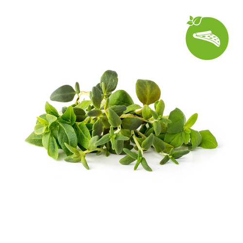 Click And Grow Italian Herb Mix Pods