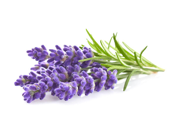 Click And Grow Lavender Pods
