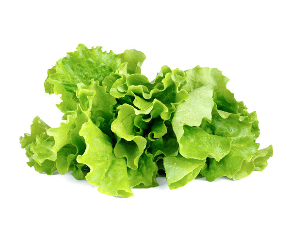 Click And Grow Green Lettuce Pods