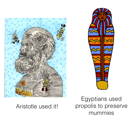 aristotle-and-mummy.png