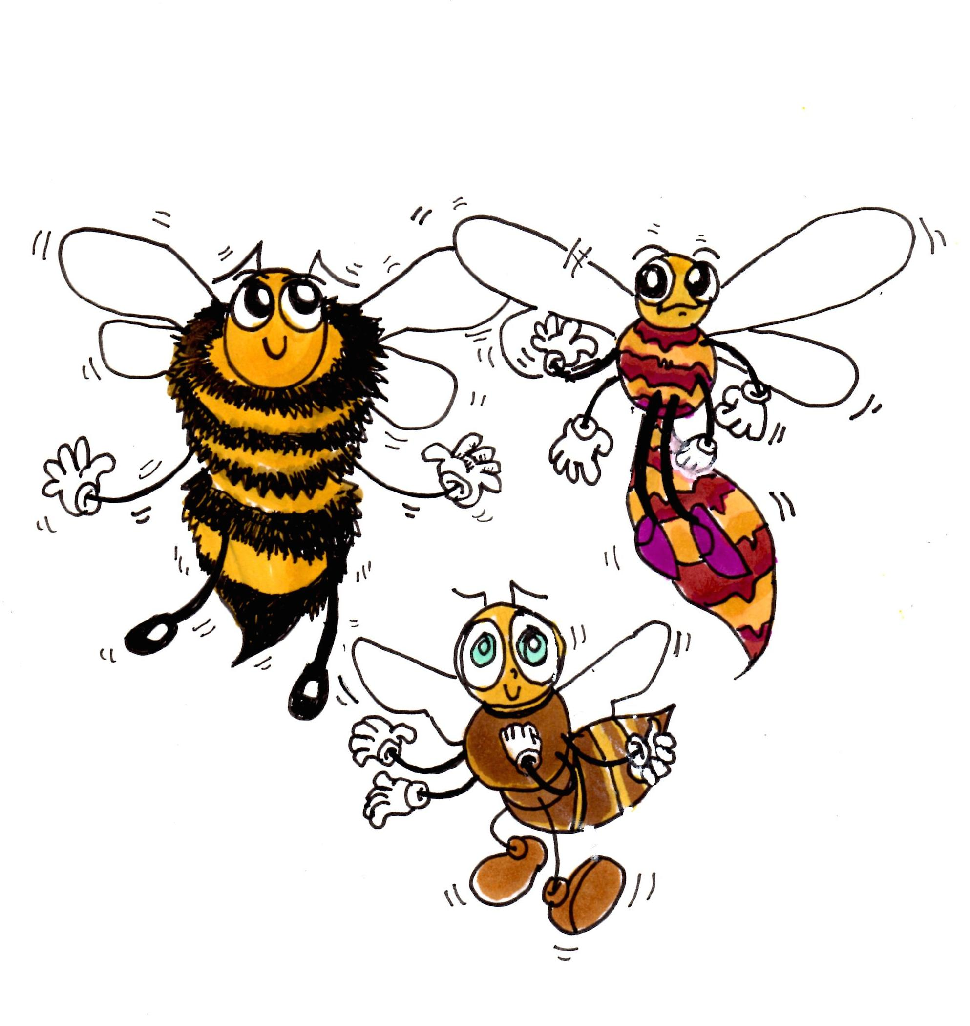 three-bee-types.jpg