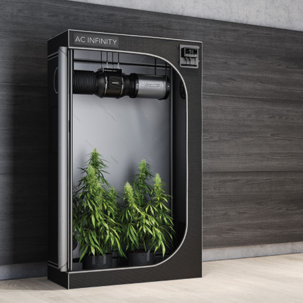 3 Techniques You Need to Optimize Your Grow