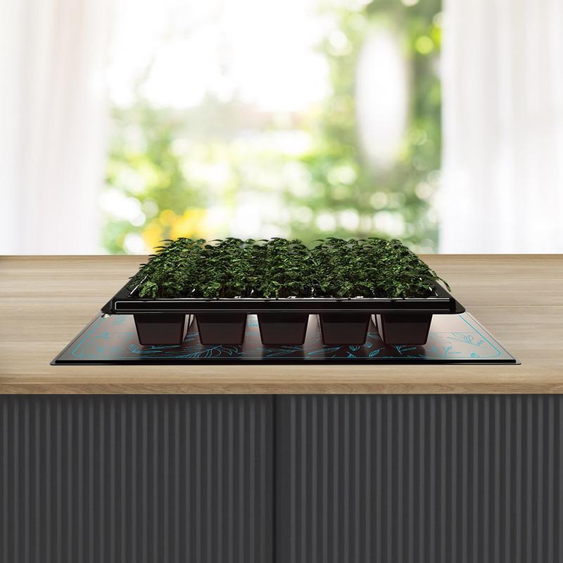 Enter the SUNCORE Seedling Mat!