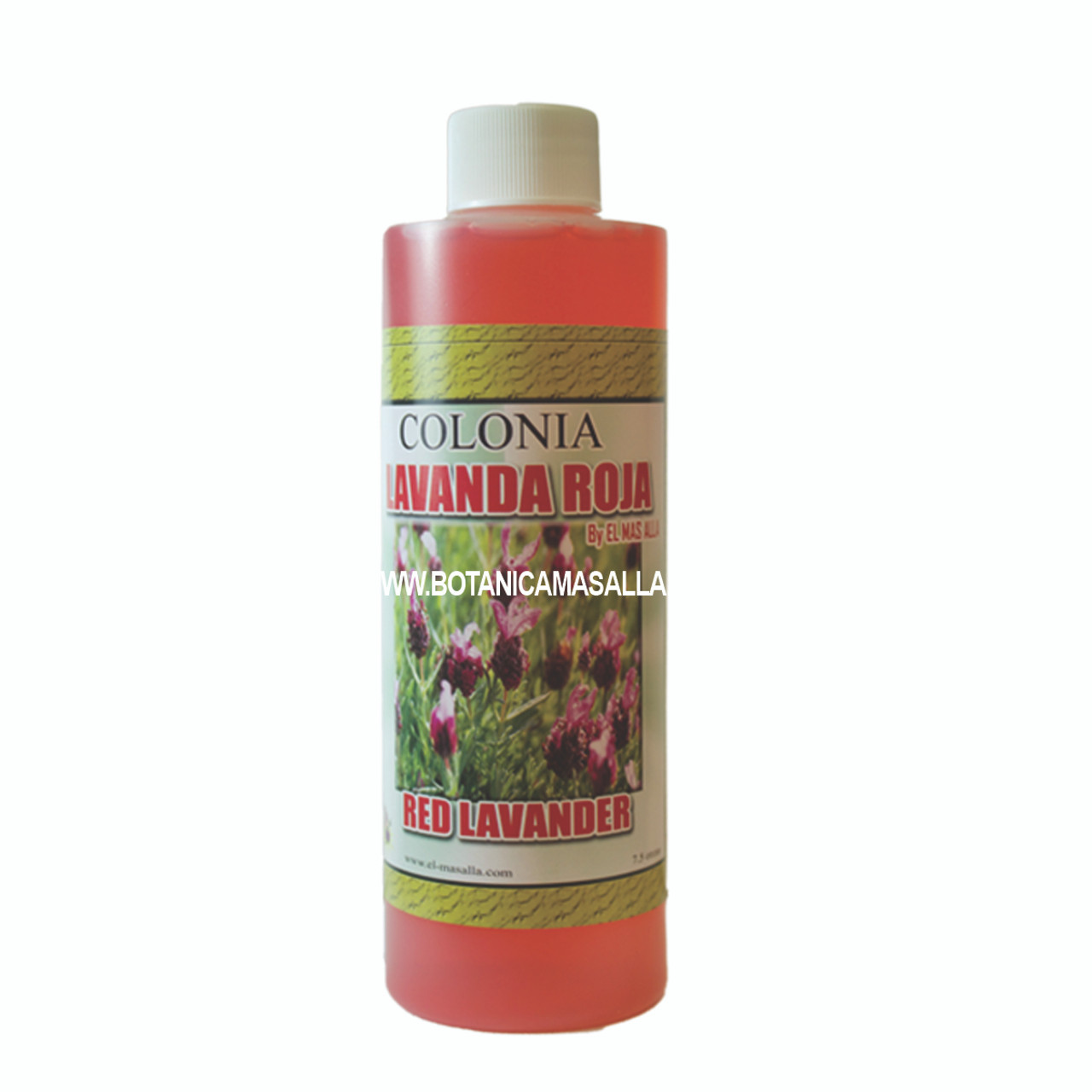 Colonia Lavanda Roja (Red Lavander)