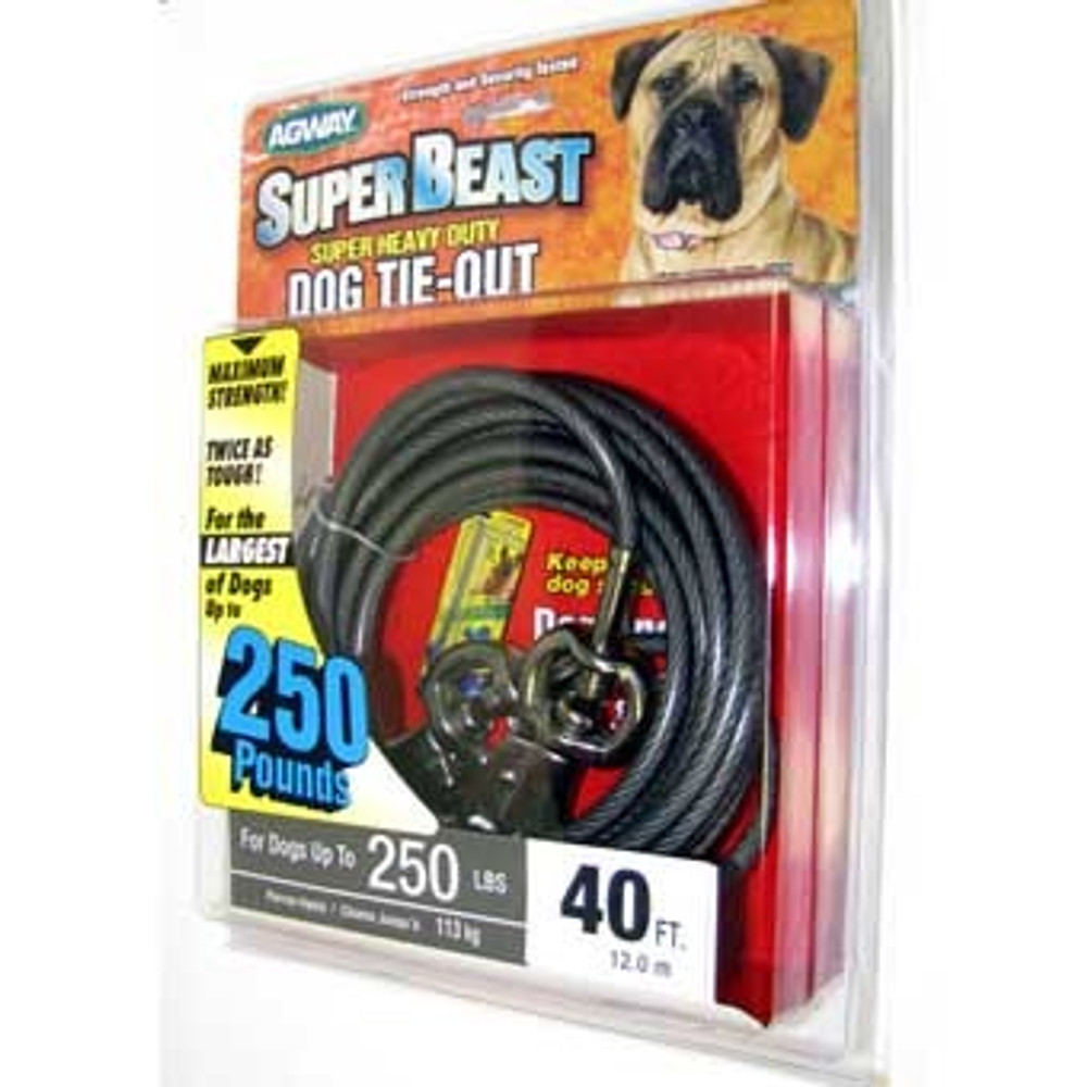 Dog Tie Out 40' Heavy Duty