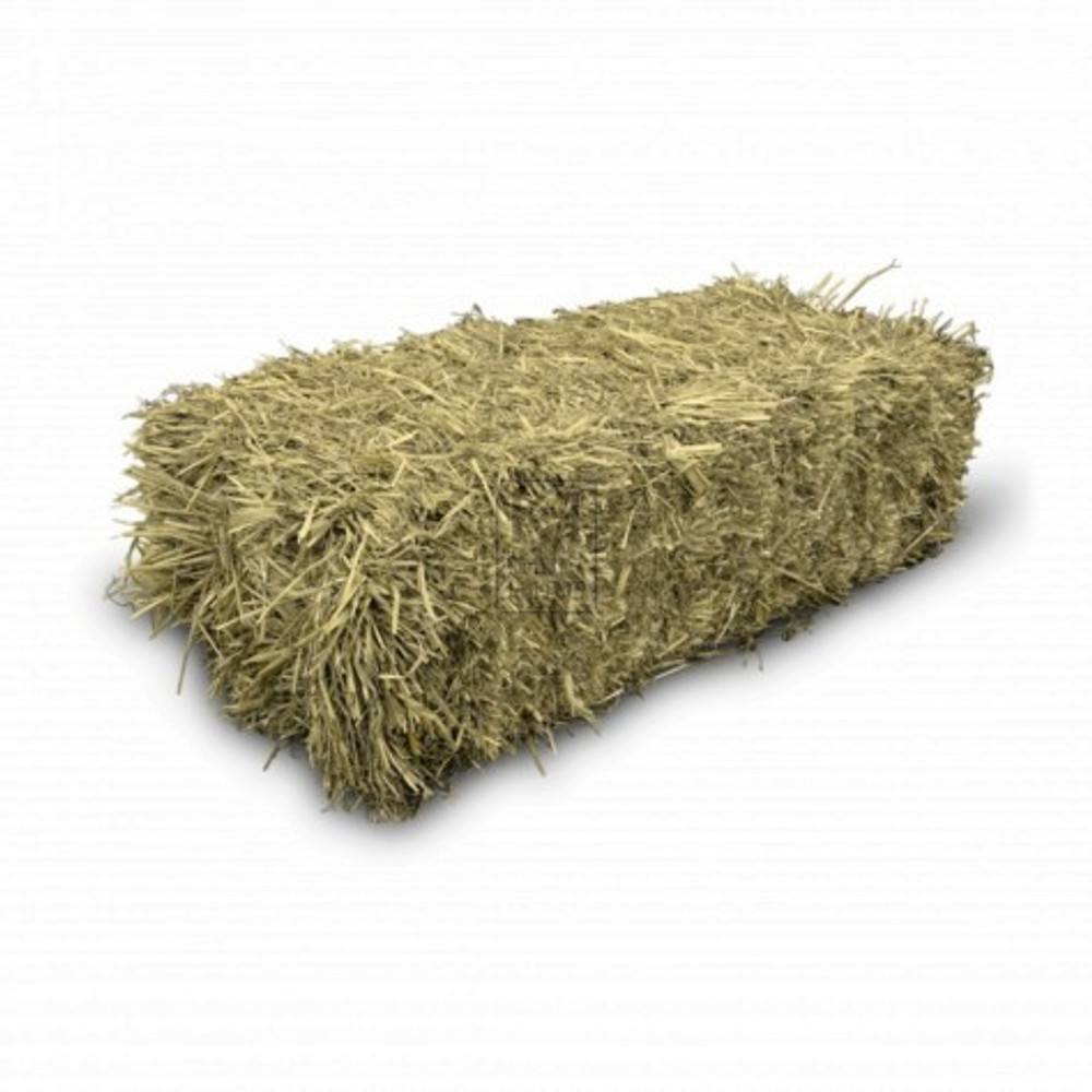 Feed Quality Hay, Square Bales, Grown In Maine