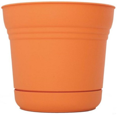 """Planter With Saucer,  5"""" Tequila Sunrise"""