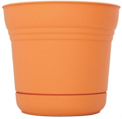 """Planter With Saucer,  7"""", Tequila Sunrise"""