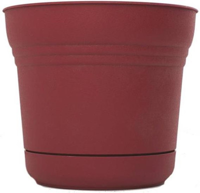 """Planter With Saucer,  5"""" Union Red"""