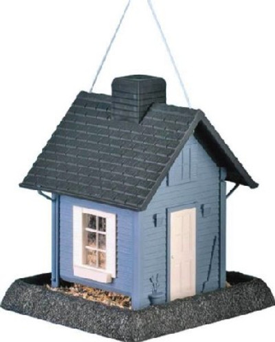 Wild Bird, Feeder, Blue Cottage