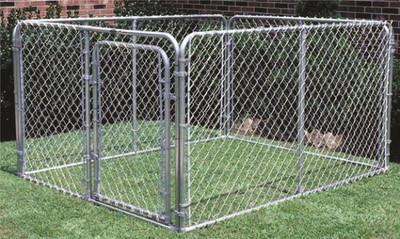 Dog Kennel, 10' x 10' x 6'