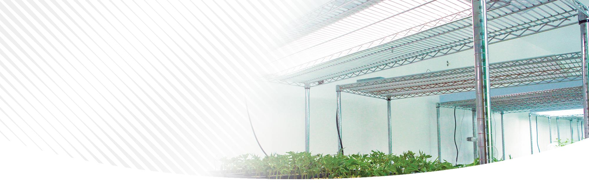 Flat Panel Veg LED Grow Light